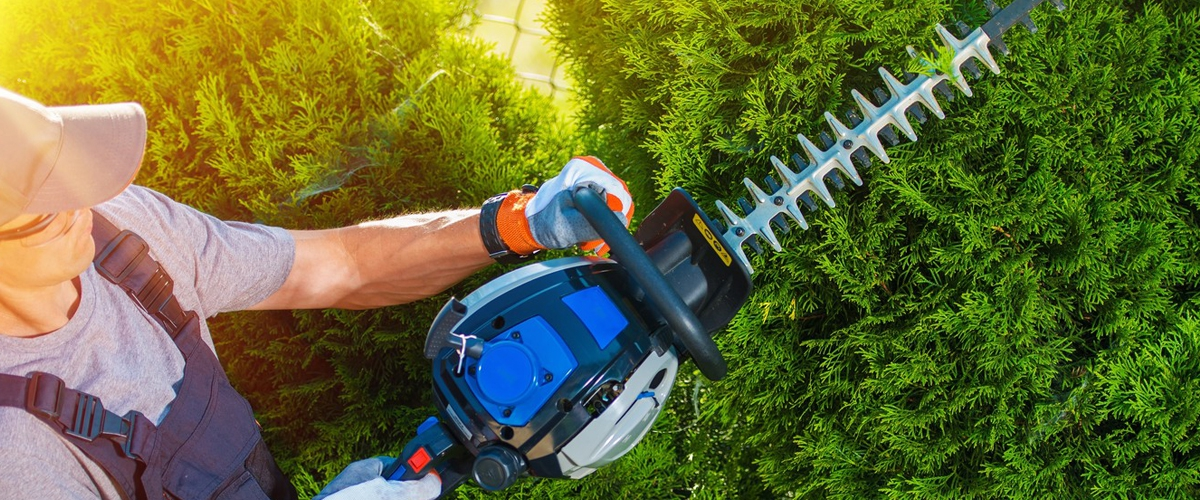 Hedge Trimmer Hero Image